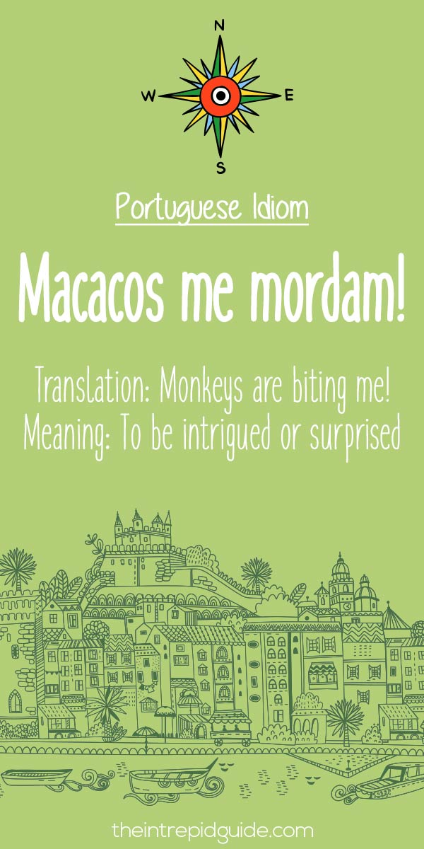 Portuguese phrases Macacos me mordam