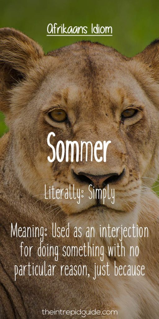 afrikaans expressions Sommer