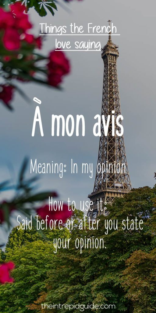 French expressions a mon avis