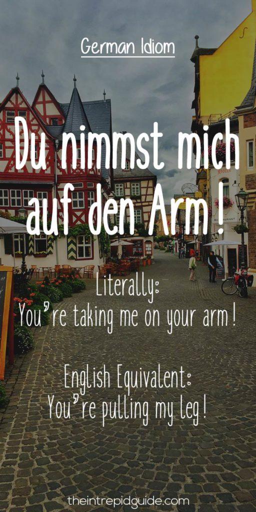 German Idioms Du nimmst mich auf den Arm