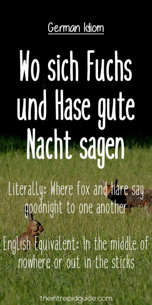 German Idioms Wo sich Fuchs-und Hase gute Nacht sagen