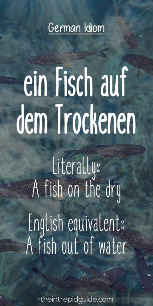 German idioms ein Fisch auf dem Trockenen