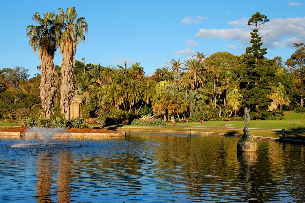 things-to-do-in-sydney-on-a-budget-botanical-gardens-lake