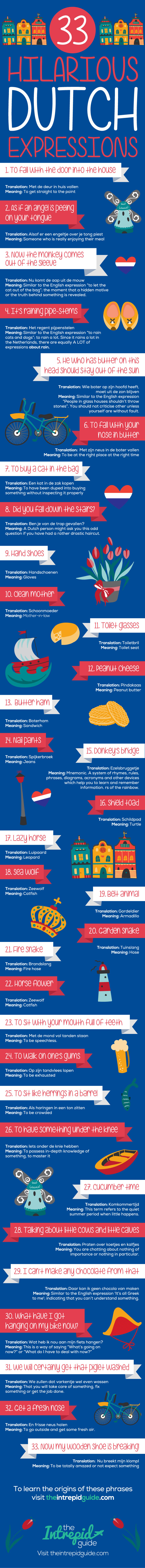 dutch phrases and idioms infographic