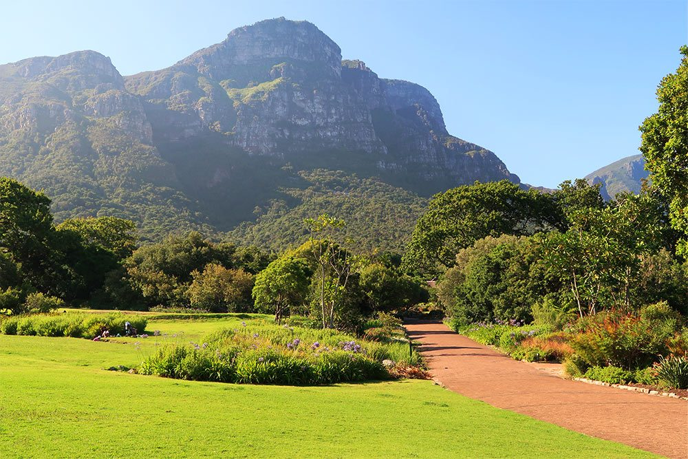 Things to do in Cape Town Kirstenbosch National Botanical Gardens