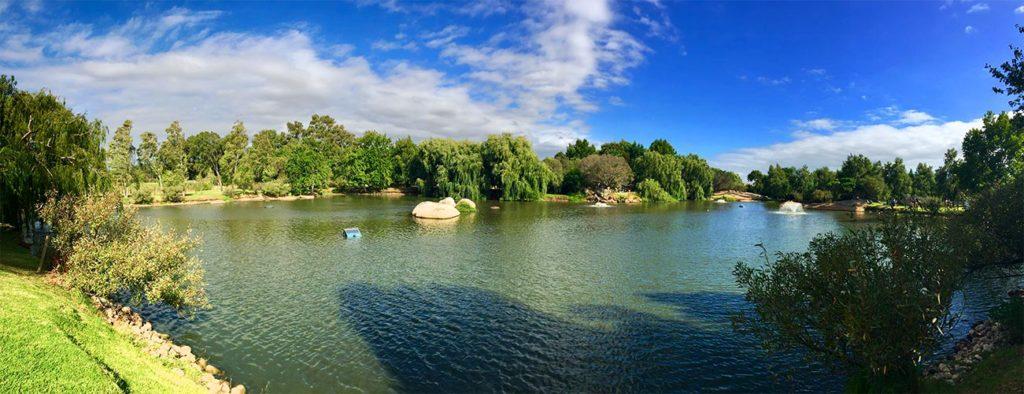 Spier Stellenbosch Lake